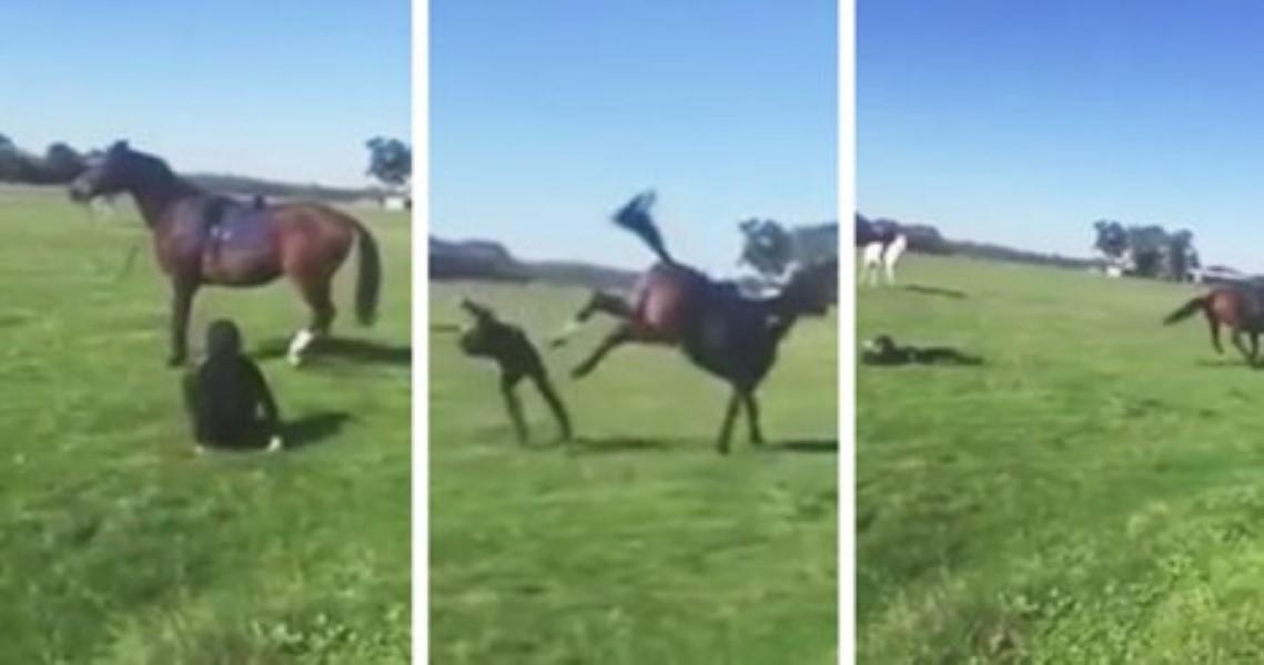 Horse kicks woman