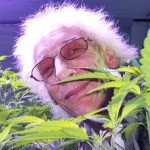 cannabischurch3