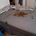 crap-the-bed